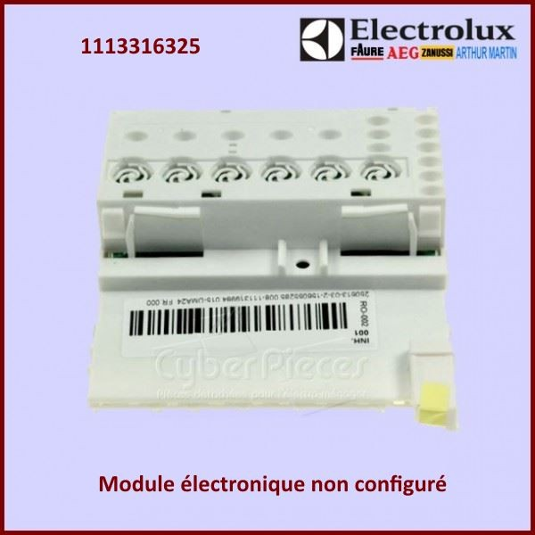 Module EDW15 non configuré Electrolux 1113316325