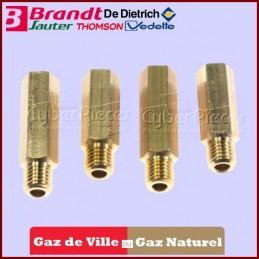 Injecteurs gaz naturel...
