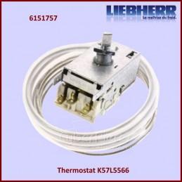 Thermostat K57L5566...