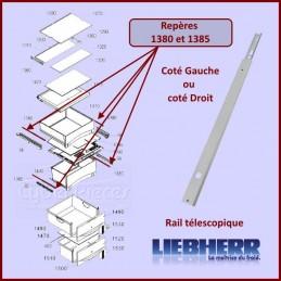 Rail telescopique Liebherr...