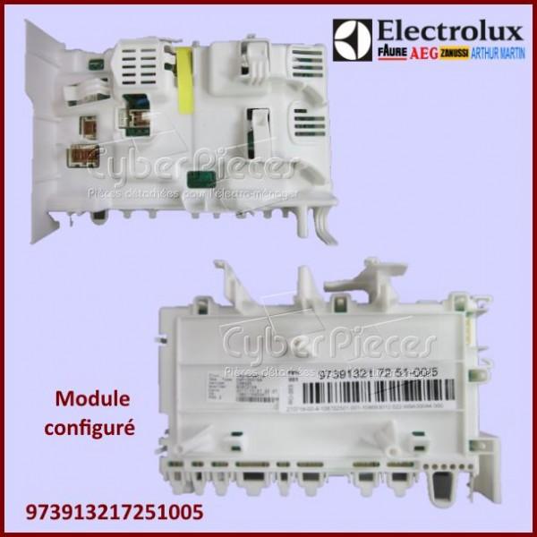 Module configuré Electrolux 973913217251005