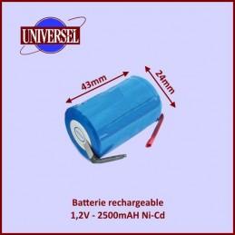 Batterie rechargeable 1,2V 2500mAH à souder CYB-111140