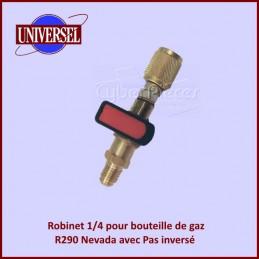 Robinet 1/4 pour bouteille de gaz R290 Nevada avec Pas inversé CYB-283557