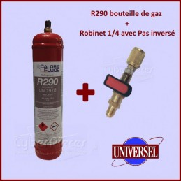 R290 bouteille de gaz de...