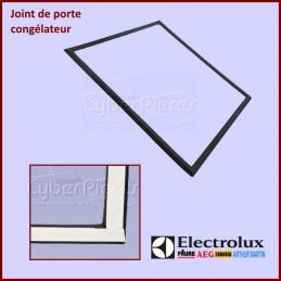 Joint de porte congélateur Electrolux 959002635 CYB-262866