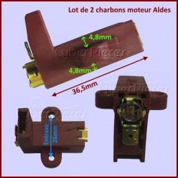 Charbons avec support 27,5x11,3x6,2mm pour moteur Aldes CYB-008501