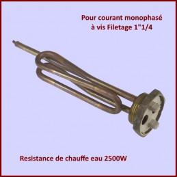 Resistance de chauffe eau 2500W Mono CYB-158664