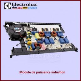Carte électronique Electrolux 3300362609 CYB-179409