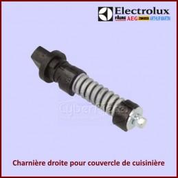 Charnière droite pour couvercle de cuisinière Electrolux 140036488017 CYB-155694