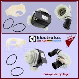 Pompe de cyclage Electrolux 4055373809 CYB-225038