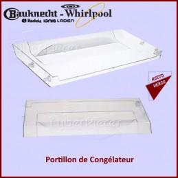 Clapet Portillon congélateur Whirlpool 480132100176 CYB-429900