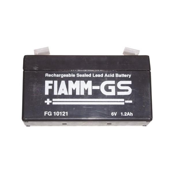 Batterie Fg10121