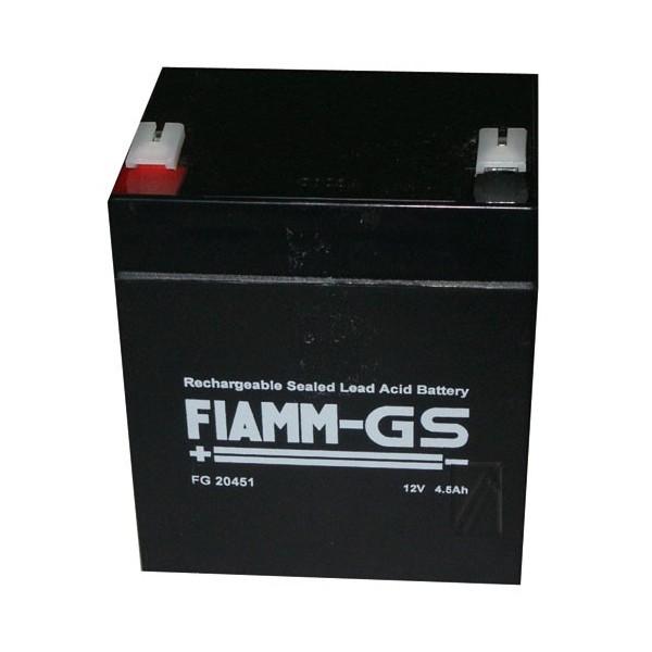 Fiam Fg20451 Batterie Rechargeble